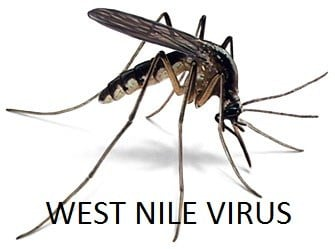 First Human Case Of West Nile Reported In Western Nebraska